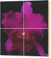 3. Escarlata   Artwork In Poster Wood Print