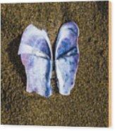 Fallen Butterfly Wood Print