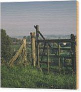 Farm Fields In Belgium Wood Print