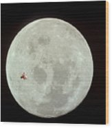 Fifi Goes To The Moon Wood Print