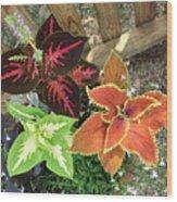 3 Flowers Wood Print