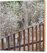 Gate 006 Wood Print