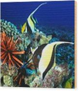 Hawaiian Reef Scene Wood Print