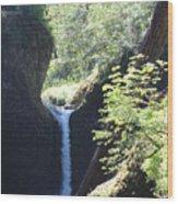 Hike Eagle Creek Wood Print