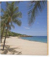 Hulopoe Beach, Palm Tree Wood Print