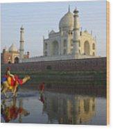 India's Taj Mahal Wood Print