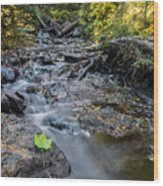 Jacob's Creek Rapids Wood Print