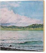 Lago De Chapala Wood Print