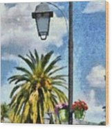 Lampost With Flowers In Nafplio Town Wood Print