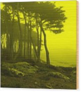 Lands' End Wood Print