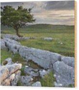 Landscape By Wood Print
