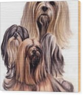 Lhasa Apso Triple Wood Print