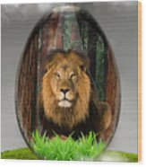 Lion Art Wood Print