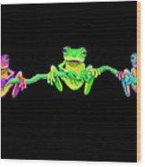 3 Little Frogs Wood Print