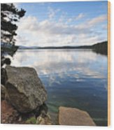 Loch Morlich Wood Print