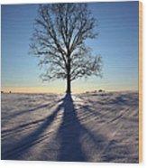 Lone Tree In Snow Wood Print
