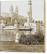 Louisiana Monument, 1904 World's Fair Wood Print