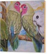 Flygende Lammet   Productions             3 Love Birds Perched Wood Print