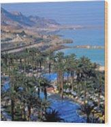 Luxury Resort On The Dead Sea Wood Print