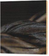 Macro Of Everyday Object Wood Print