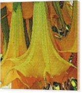 Nature Series Wood Print