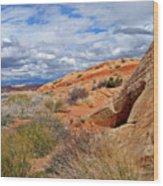Nevada Desert Wood Print