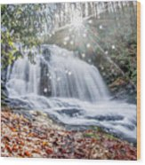 North Carolina - Dupont State Forest - Waterfall Collection Wood Print