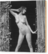 Nude Art Photography By Mary Bassett Wood Print
