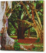 Old Freinds Wood Print