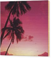 Palms Against Pink Sunset Wood Print