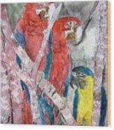 3 Parrots Wood Print