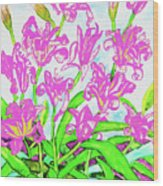 Pink Daily Lilies Wood Print