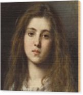 Portrait Of A Young Girl Alexei Alexeivich Harlamoff Wood Print