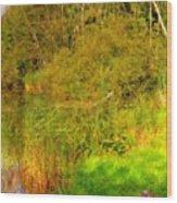 Q Landscape Wood Print