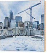 Rare Winter Weather In Charlotte North Carolina Wood Print