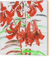 Red Lilies, Hand Drawn Painting Wood Print
