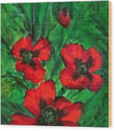 3 Red Poppies Wood Print