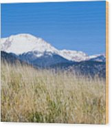 Red Rock Canyon Open Space Park Wood Print
