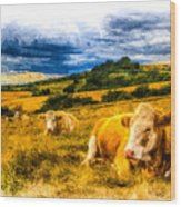Resting Cows Art Wood Print