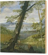 River Landscape Wood Print