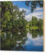 Roath Park Lake Wood Print