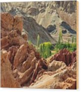 Ruins Basgo Monastery Leh Ladakh Jammu And Kashmir India Wood Print