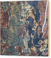 Rust Closeup  Wood Print