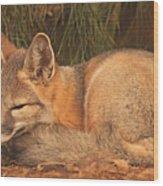 San Joaquin Kit Fox  Wood Print