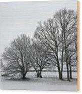 Snow On Epsom Downs Surrey Uk Wood Print