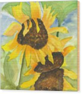 3 Sunflowers Wood Print