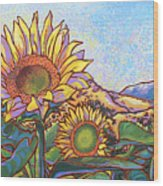 3 Sunflowers Wood Print by Nadi Spencer