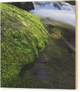 Sweet Creek Oregon 12 Wood Print