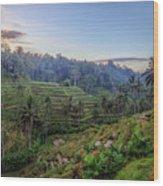 Tegalalang - Bali Wood Print