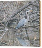 The Great Blue Heron Wood Print